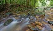 Ironpot Creek,, Toonumbar National Park